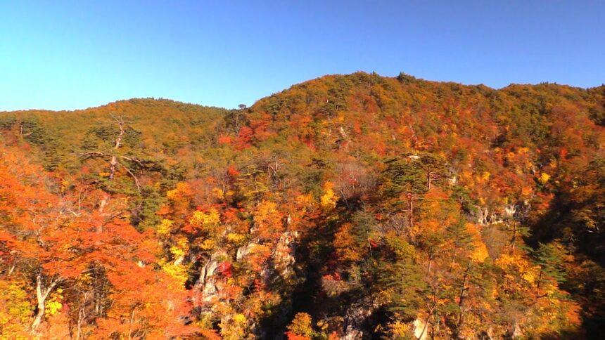 東北の秋の風景 宮城県の観光名所 鳴子峡の美しい紅葉